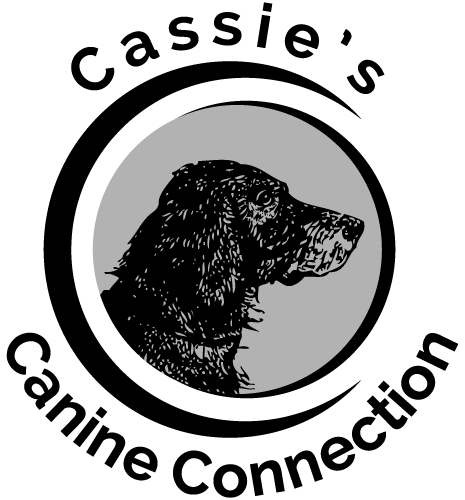 CassiesCanineConnection